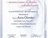 nici nowoczesne techniki odmladzania - dyplom z zakresu chirurgii plastycznej